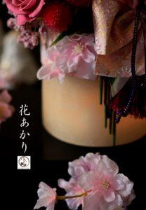 花あかり3